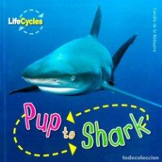 Libros: PUP TO SHARK TAPA FLEXIBLE. Lote 184366907