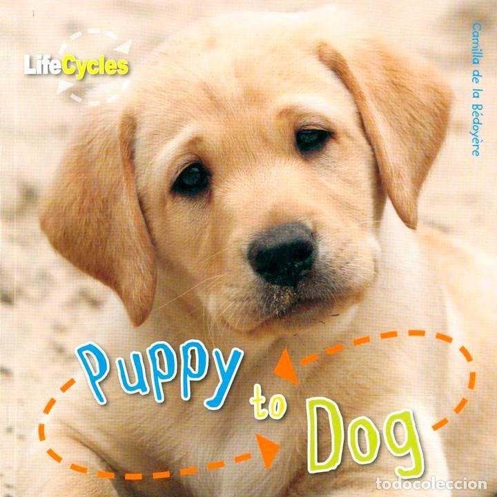 PUPPY TO DOG TAPA FLEXIBLE (Libros Nuevos - Idiomas - Inglés)