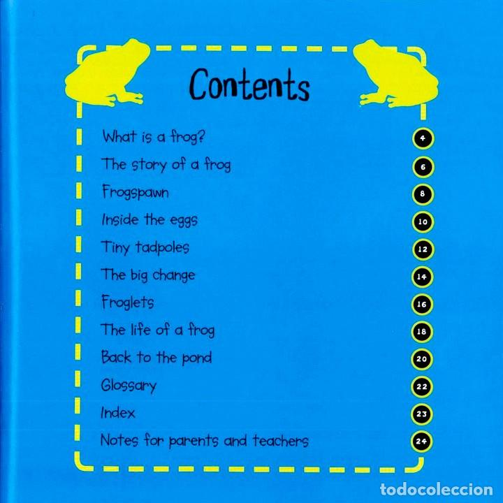 Libros: TADPOTE TO FROG TAPA FLEXIBLE - COMPRANDO TRES TÍTULOS AL MENOS DE ESTA COL. SE SIRVEN SIN GAS/ENVÍO - Foto 2 - 184368573