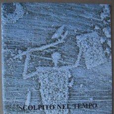 SCOLPITO NEL TEMPO. LE INCISIONI RUPESTRI DELLA VALCAMÓNICA ( ITALIA )