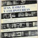 Libros: IZAS. RABIZAS Y COLIPOTERRAS. CAMILO JOSÉ CELA. EDITORIAL LUMEN. BARCELONA 1964. Lote 157211498