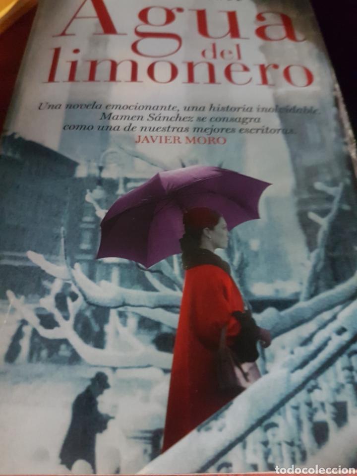 AGUA DEL LIMONERO, DE MAMEN SÁNCHEZ (Libros Nuevos - Narrativa - Literatura Española)