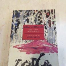 Libros: ANIMAL ACORRALADO-GEOFFREY HOUSEHOLD - INTRODUCCIÓN DE VICTORIA NELSON. Lote 218339128