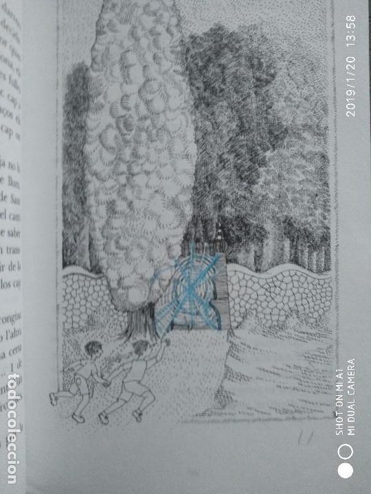 Libros: ELS SET ENIGMES DE L'IRIS. MERCE CANELA GARAYOA - Foto 3 - 147706802