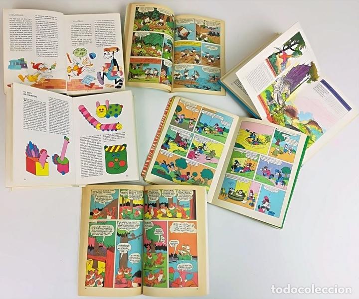 Libros: LOTE DE 5 EJEMPLARES WALT DISNEY. VV. AA. VV. EDITORIALES. 1974/1987 - Foto 7 - 155195006