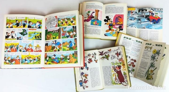 Libros: 4 EJEMPLARES WALT DISNEY. 1 HANNA-BARBERA. VV. AA. EDICIONES MONTENA. S.A. 1972/1983 - Foto 7 - 155205602
