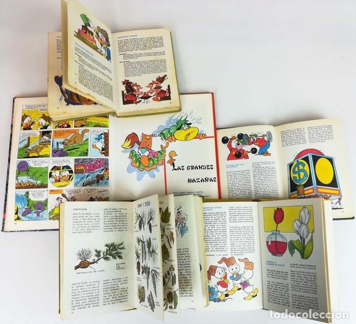 Libros: 4 EJEMPLARES WALT DISNEY. 1 HANNA-BARBERA. VV. AA. EDICIONES MONTENA. S.A. 1972/1983 - Foto 8 - 155205602