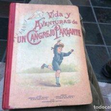 Libros: VIDA Y AVENTURAS DE UN CANGREJO PARLANTE.. Lote 195721058