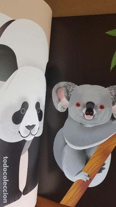 Libros: RETRATOS DE ANIMALES / LUCIE BRUNELLIÈRE / EDITORIAL JUVENTUD-2019 / GRAN FORMATO. 33.5 X 45.5 CM. - Foto 4 - 198095753
