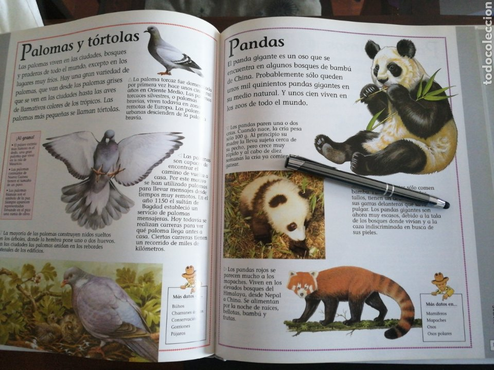 Libros: TU PRIMERA ENCICLOPEDIA DE LOS ANIMALES, SUSAETA - Foto 4 - 201195238
