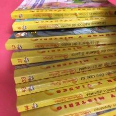 Libri: GERONIMO STILTON LOTE 18 LIBROS EN MUY BUEN ESTADO. Lote 206170563
