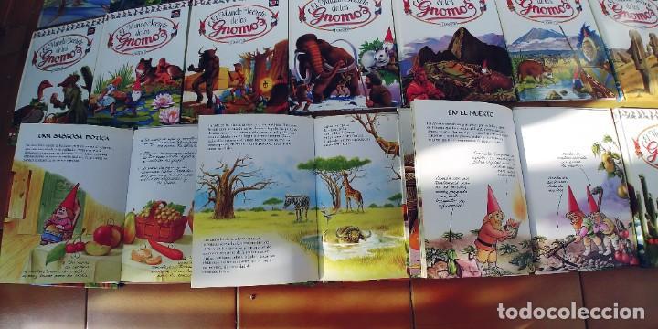 Libros: EL MUNDO SECRETO DE LOS GNOMOS-LOTE DE 20 LIBROS,TAPA DURA,AÑO 1988, - Foto 2 - 217936930