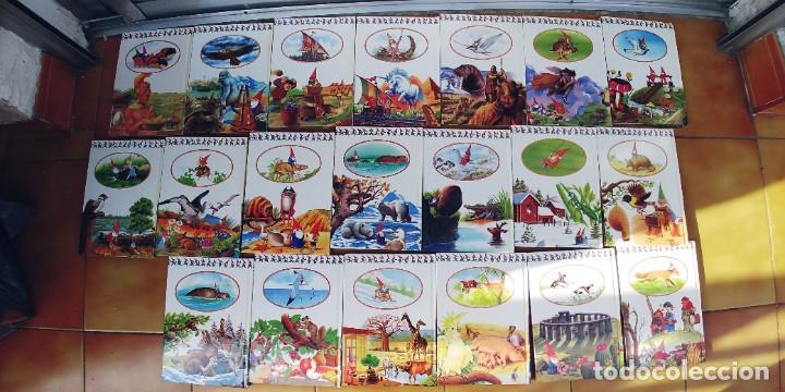 Libros: EL MUNDO SECRETO DE LOS GNOMOS-LOTE DE 20 LIBROS,TAPA DURA,AÑO 1988, - Foto 3 - 217936930