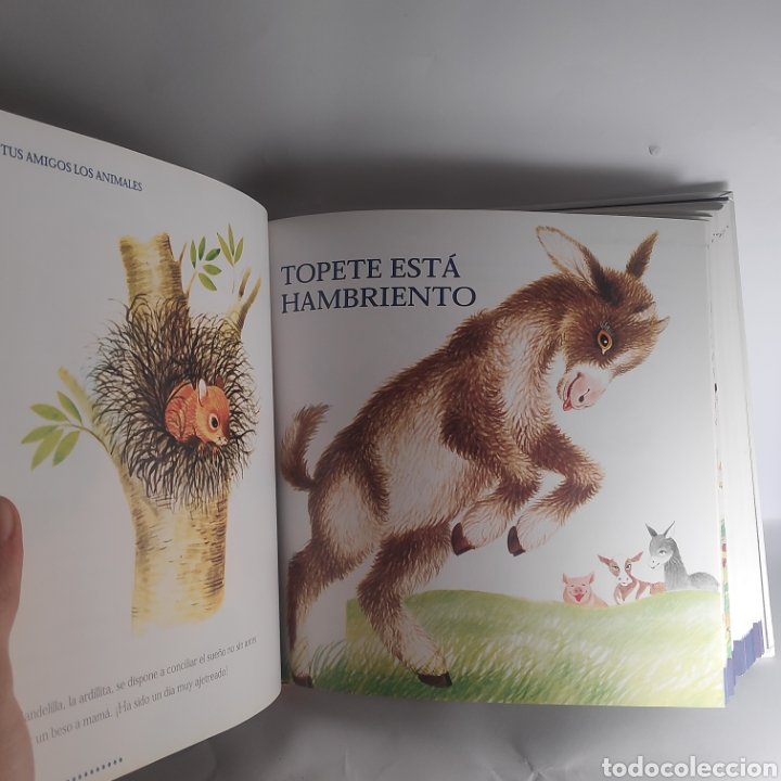 Libros: Tus amigos los animales. Susaeta - Foto 2 - 234657475