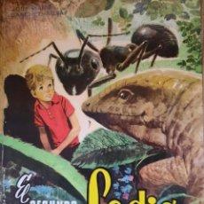 Libros: EL SEGUNDO VERANO DE LADIS -JOSÉ MARIA SÁNCHEZ SILVA-. Lote 240866160