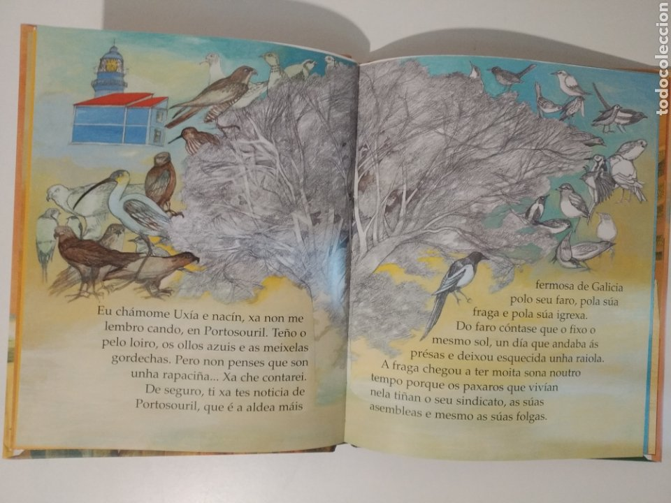 Libros: A Festa no faiado. María Victoria Moreno. Irene Fra. Arbore galaxia. En gallego - Foto 4 - 277447778