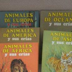 Libros: ANIMALES Y SUS CRÍAS DE LOS 5 CONTINENTES. Lote 117991132