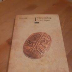Libros: EL ESCARABAJO DE HORUS DE ROCIO RUEDA ED. OXFORD 2011 309 P.. Lote 197757522