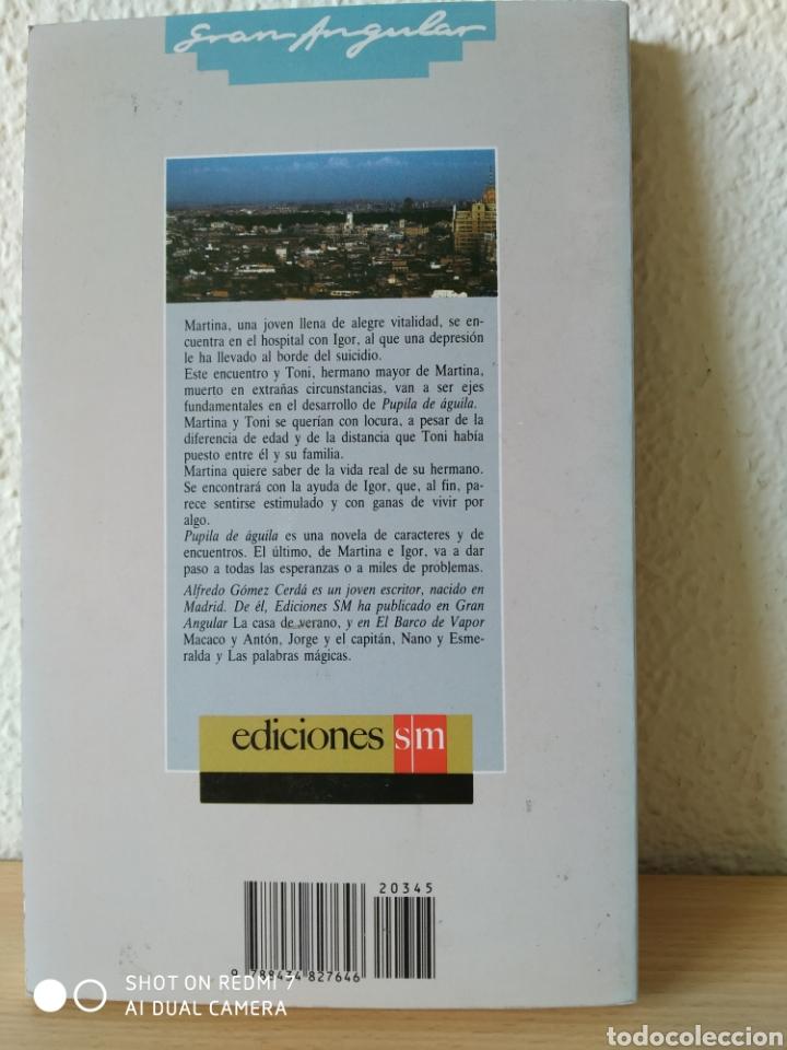 Libros: Pupila de águila. Alfredo Gómez Cerdá. Nuevo - Foto 2 - 204000465