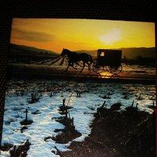 Libros: LA FILLA DE LA NIT. AUTORA LAURA GALLEGO. Lote 210934317