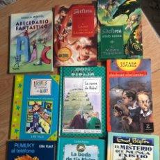 Livres: LOTE 9 LIBROS DELTORA ENID BLYTON PUMUKY. Lote 241709185
