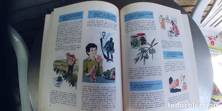 Libros: El porqué de las cosas ,coleccion viaje por la ciencia,SUSAETA,TAPA FINA,AÑO 1975 - Foto 2 - 276389673
