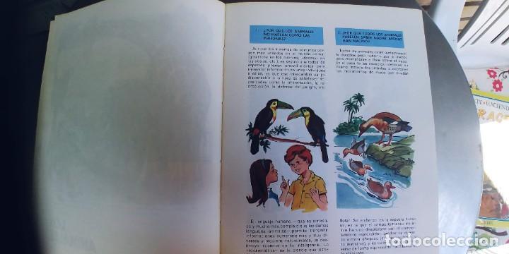 Libros: El porqué de las cosas ,coleccion viaje por la ciencia,SUSAETA,TAPA FINA,AÑO 1975 - Foto 5 - 276389673