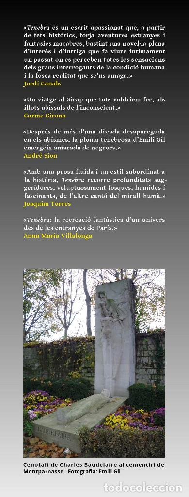 Libros: TENEBRA (en catalán), de Emili Gil. Novela ganadora del VII premio Ictineu - Foto 3 - 263950425