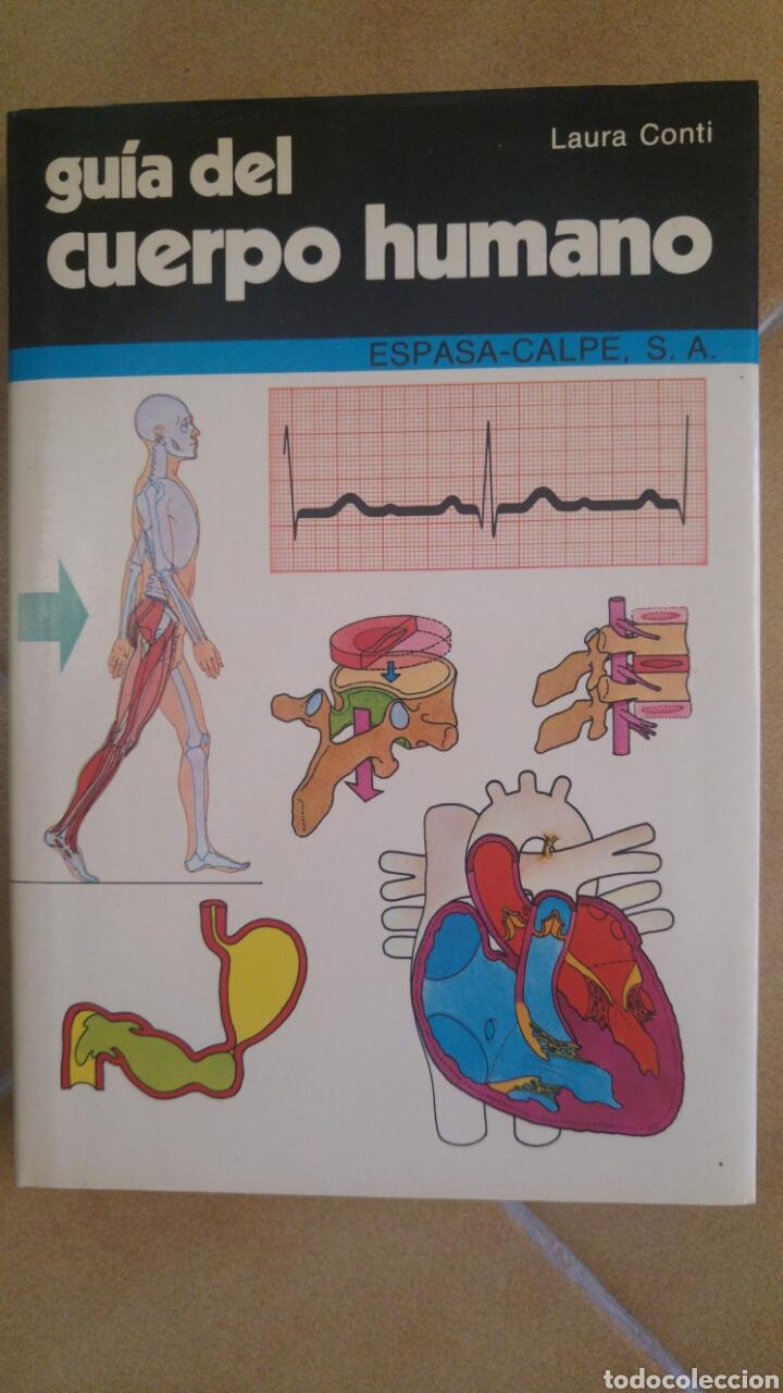 GUÍA DEL CUERPO HUMANO- LAURA CONTI (Libros Nuevos - Ciencias, Manuales y Oficios - Medicina, Farmacia y Salud)
