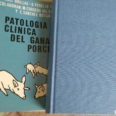 Libros: PATOLOGÍA Y CLÍNICA DEL GANADO PORCINO 1980. Lote 121447850