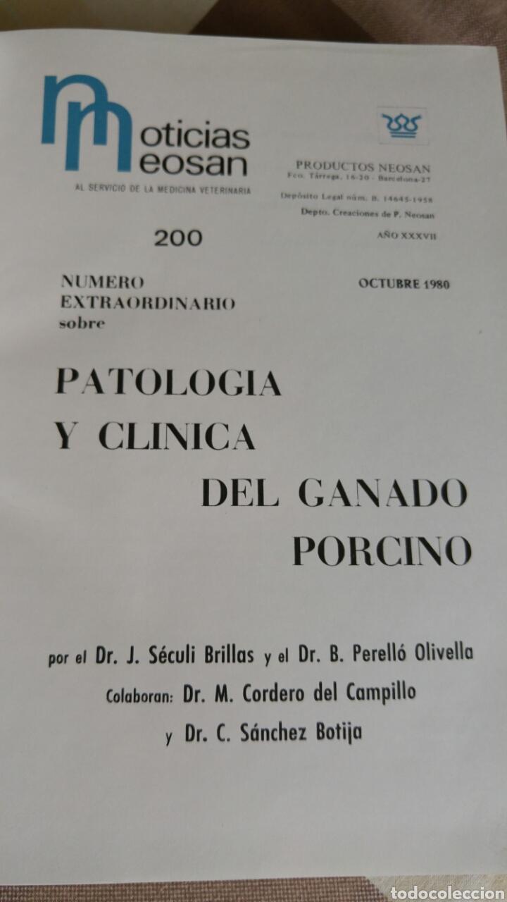 Libros: como nuevo Patología y clínica del ganado porcino 1980 - Foto 3 - 121447850