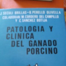 Libros: COMO NUEVO PATOLOGÍA Y CLÍNICA DEL GANADO PORCINO 1980. Lote 121447850