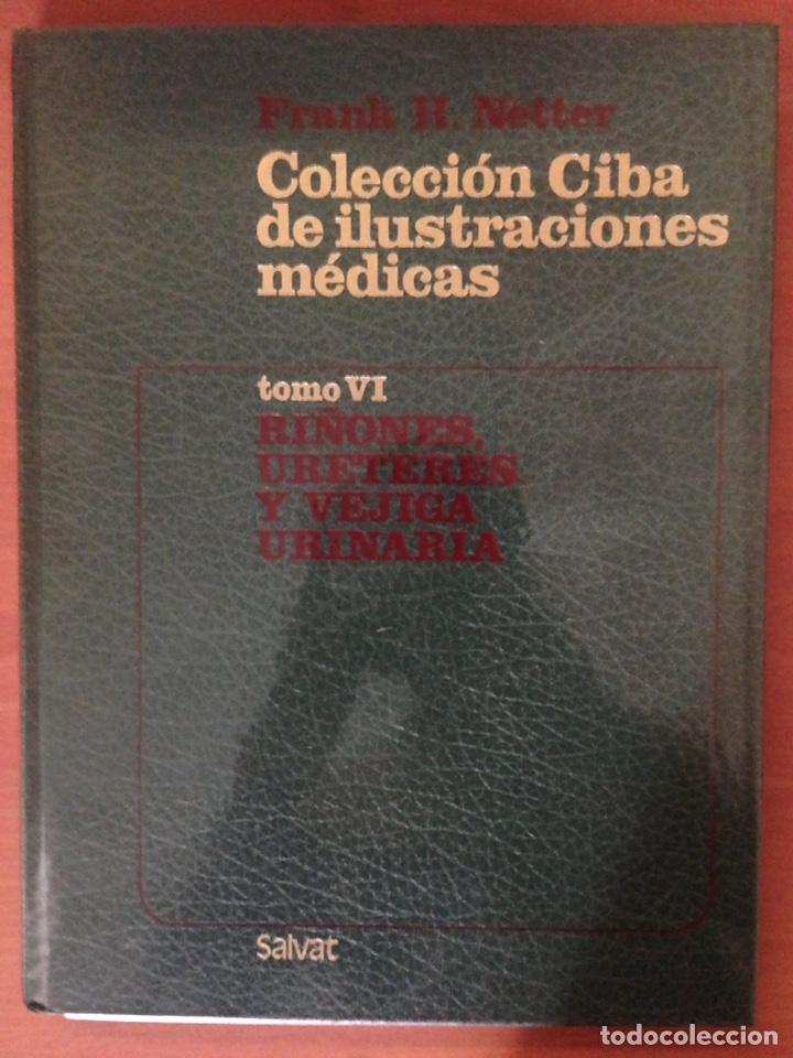 COLECCIÓN DE ILUSTRACIONES MÉDICAS (Libros Nuevos - Ciencias, Manuales y Oficios - Medicina, Farmacia y Salud)