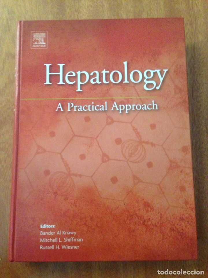 Libros: hepatology a practical approach - Foto 1 - 135077645