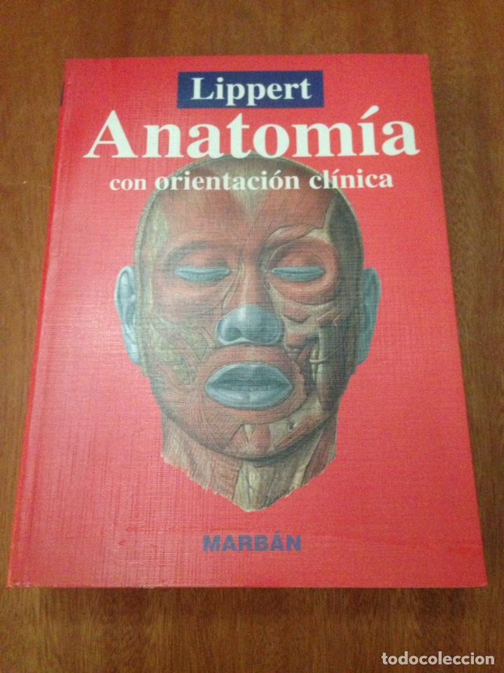 ANATOMÍA CON ORIENTACIÓN CLÍNICA (Libros Nuevos - Ciencias, Manuales y Oficios - Medicina, Farmacia y Salud)