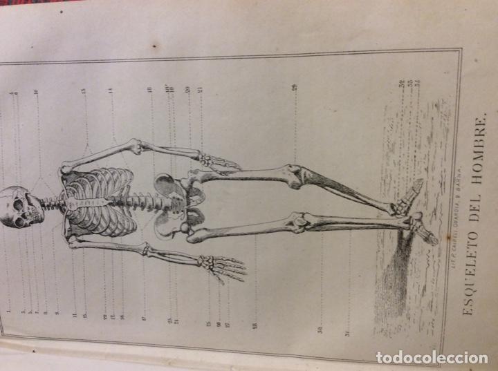 Libros: Vademecum del practicante. 1871. - Foto 5 - 146920174