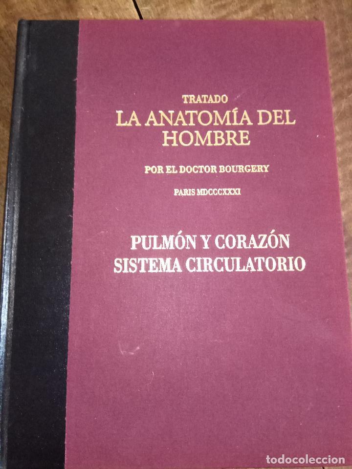 TRATADO LA ANATOMÍA DEL HOMBRE, PULMÓN Y CPRAZÓN SISTEMA CIRCULATORIO (Libros Nuevos - Ciencias, Manuales y Oficios - Medicina, Farmacia y Salud)