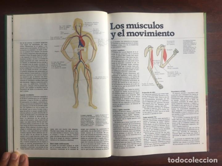 Libros: El libro de la salud, el Dr Santiago Dexeus Un completo compendio con las claves del cuerpo humano - Foto 5 - 177731403