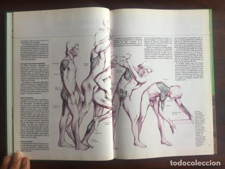 Libros: El libro de la salud, el Dr Santiago Dexeus Un completo compendio con las claves del cuerpo humano - Foto 6 - 177731403