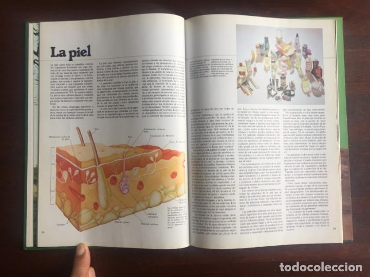 Libros: El libro de la salud, el Dr Santiago Dexeus Un completo compendio con las claves del cuerpo humano - Foto 9 - 177731403