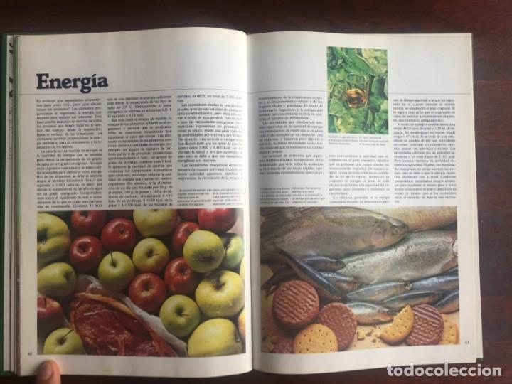 Libros: El libro de la salud, el Dr Santiago Dexeus Un completo compendio con las claves del cuerpo humano - Foto 12 - 177731403