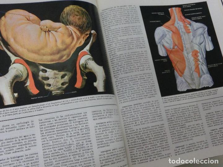 Libros: GRAN DICCIONARIO MEDICO - FRATELLI FABBRI EDITORI - PUBLICACIONES CONTROLADAS - 1974 6 TOMOS - Foto 3 - 191639780