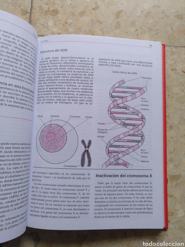 Libros: ENCICLOPEDIA MÉDICA FAMILIAR 1 - Foto 3 - 207500823