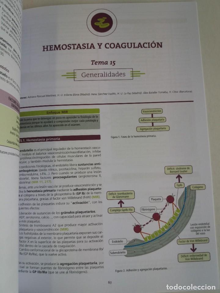 Libros: HEMATOLOGIA ESTUPENDO MANUAL COMPENDIO DE TODA LA HEMATOLOGIA NUEVO 2018 MIR - Foto 27 - 215271206