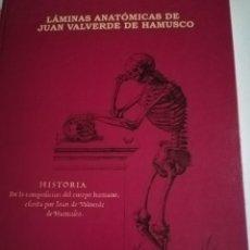 Libros: LÁMINAS ANATÓMICAS DE JUAN VALVERDE DE HAMUSCO. Lote 218723051