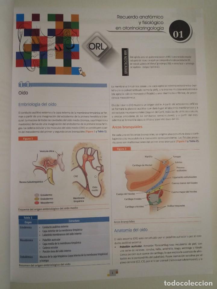 Libros: OTORRINOLARINGOLOGIA ESTUPENDO MANUAL COMPENDIO DE TODA LA LARINGOLOGIA NUEVO 2018 MIR - Foto 5 - 220422047