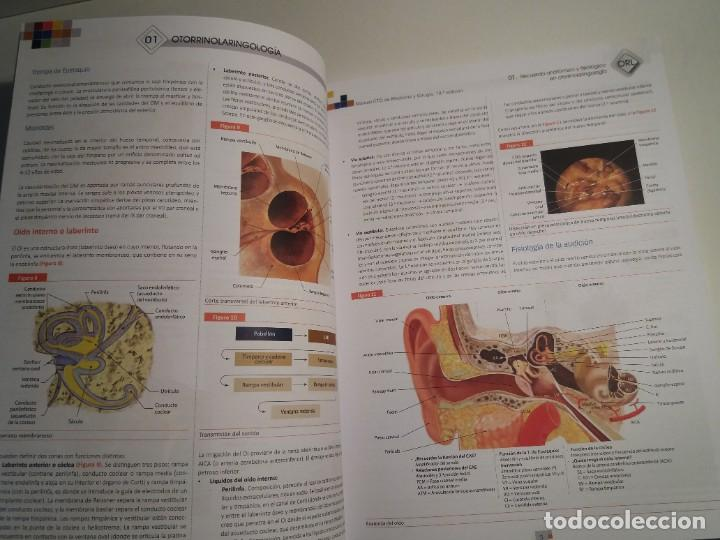 Libros: OTORRINOLARINGOLOGIA ESTUPENDO MANUAL COMPENDIO DE TODA LA LARINGOLOGIA NUEVO 2018 MIR - Foto 7 - 220422047