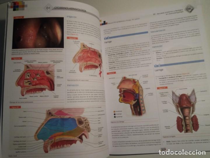 Libros: OTORRINOLARINGOLOGIA ESTUPENDO MANUAL COMPENDIO DE TODA LA LARINGOLOGIA NUEVO 2018 MIR - Foto 9 - 220422047
