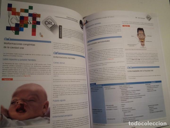 Libros: OTORRINOLARINGOLOGIA ESTUPENDO MANUAL COMPENDIO DE TODA LA LARINGOLOGIA NUEVO 2018 MIR - Foto 20 - 220422047