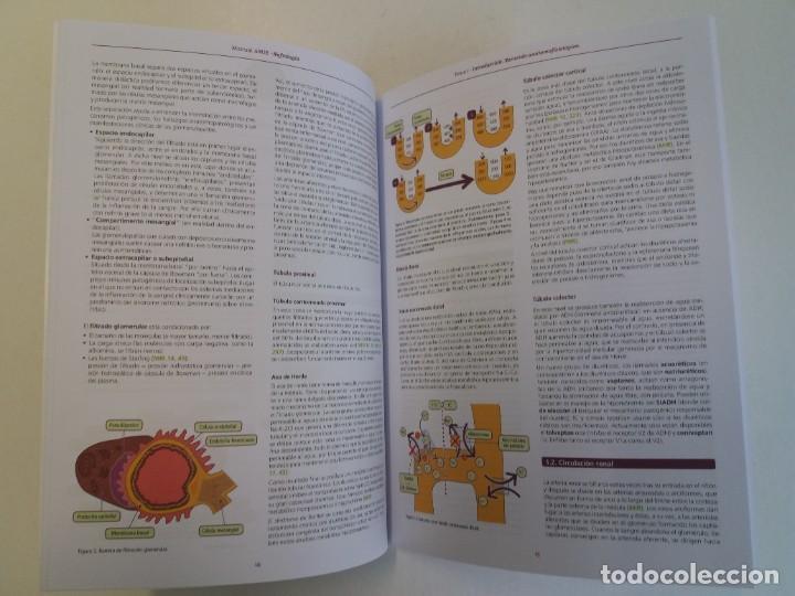 Libros: NEFROLOGIA ESTUPENDO MANUAL COMPENDIO DE TODA LA NEFROLOGIA NUEVO 2018 MIR - Foto 6 - 224243325